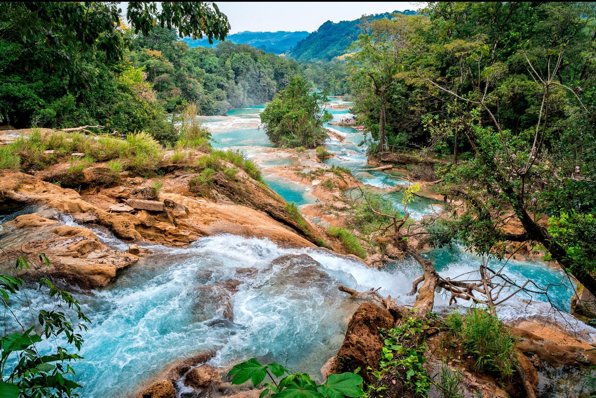 Tours cascadas de agua azul y misol h operado por expertos for Cascadas de agua